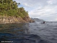 Scuba Diving 54